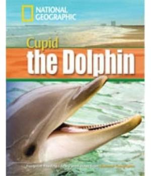 Книга для читання Cupid the Dolphin (level B1 — 1600 headwords) Reader with Multi-ROM
