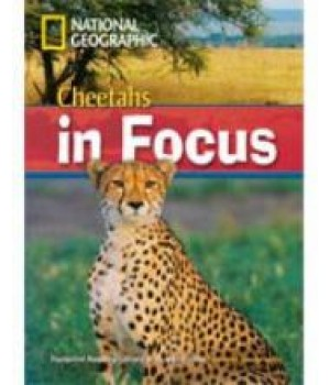Книга для читання Cheetahs in Focus! (level B2 — 2200 headwords) Reader with Multi-ROM